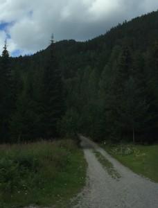 Veien over fjellet